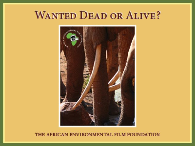 Wanted Dead or Alive movie by AEFF